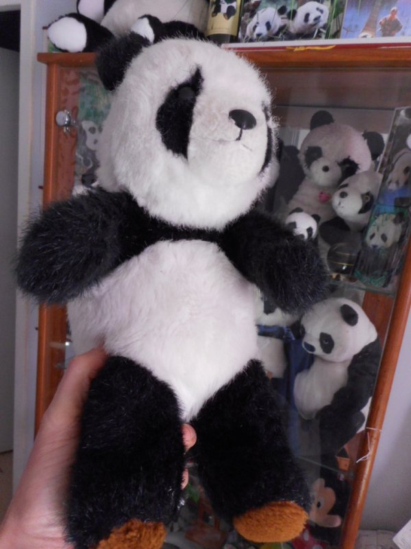 panda peluche 15