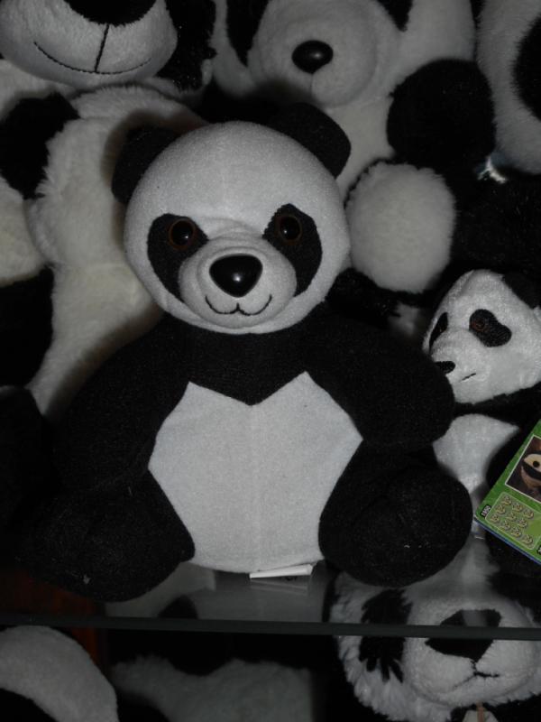 Panda peluche 18