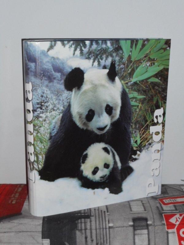 panda Classeur 1