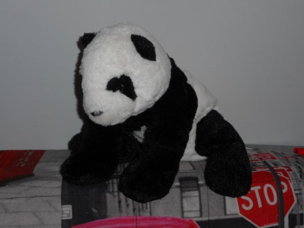 panda peluche 23