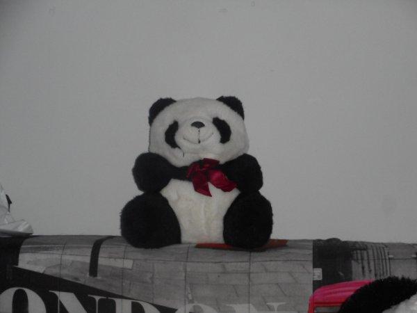 panda peluche 24