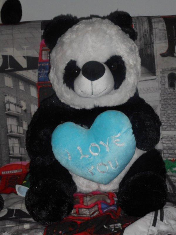 panda peluche 25