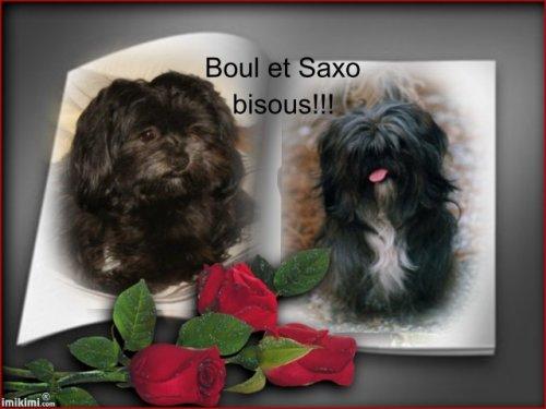 SAXO et BOUL : Isabel avant de partir en vacances