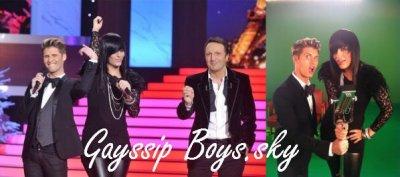 Ce Soir sur TF1 : En Route Pour 2011