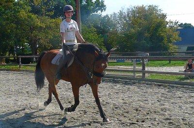 Il me manque tellement cette bouille de poney qui ma tellement apporter de bonheur pendant 6mois ♥ ! Je t'aime et tu reste toujours mon popo boy à moi ♥