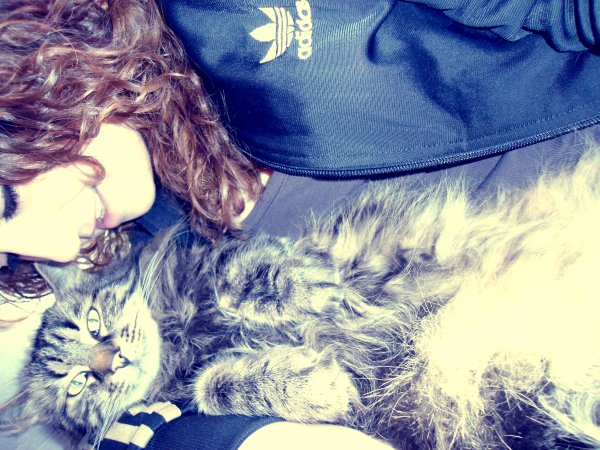 Je L'aime mon chat ! ♥