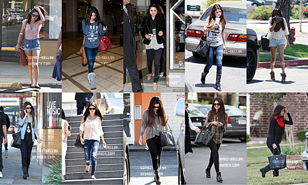 Bilan 2012 pour Selena.
