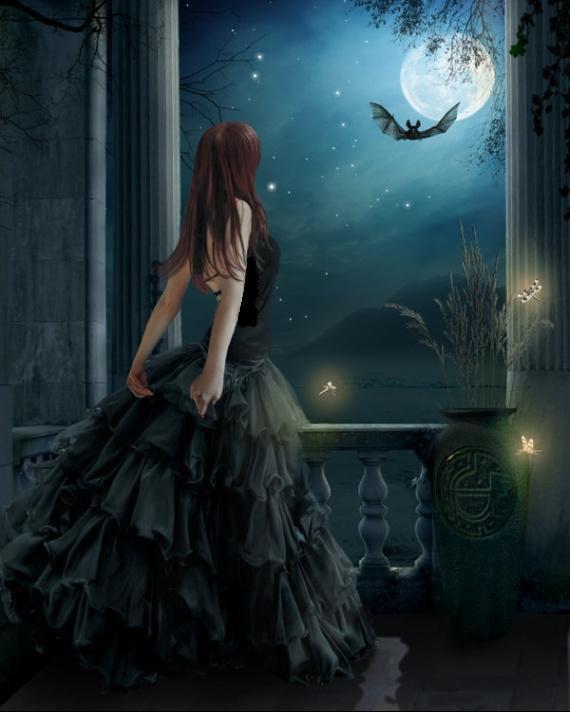J'aime le ciel nocturne qui brille tel un écrin de velours noir sur lequel sont déposés des milliards de diamants.