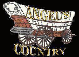 ANGEL'S COUNTRY ASSEMBLÉE GÉNÉRALE DIMANCHE 26 JUILLET A 11 HEURES FOYER CSA AUZAT SUIVI D'UN APÉRITIF
