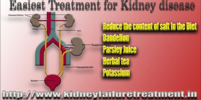 How Kidney Failure Is To Be Treated In Ayurveda?
