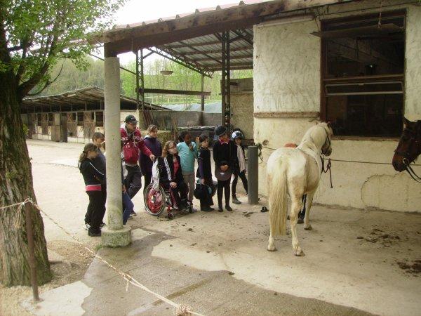 centre equestre 4 fers st marcellin