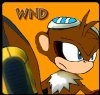 Wind-the-Monkey