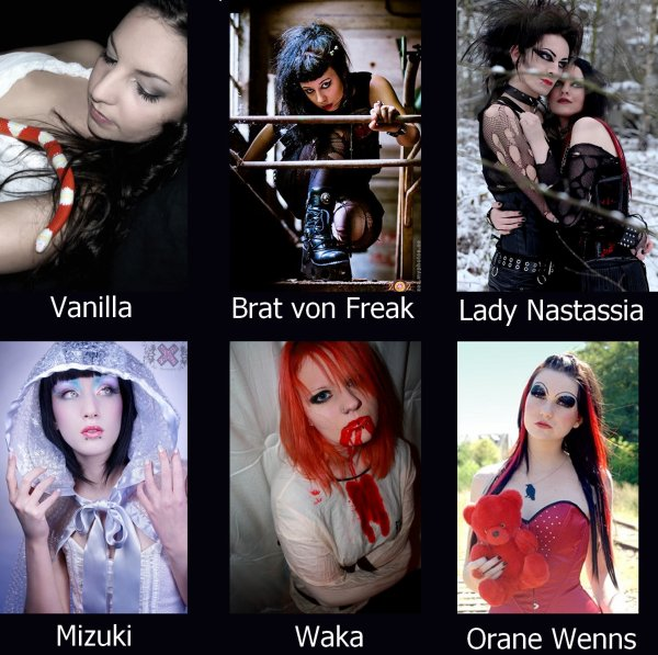 Zoom sur certains modèles du forum!