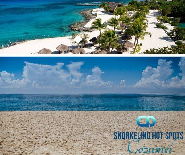 Snorkeling hot spots