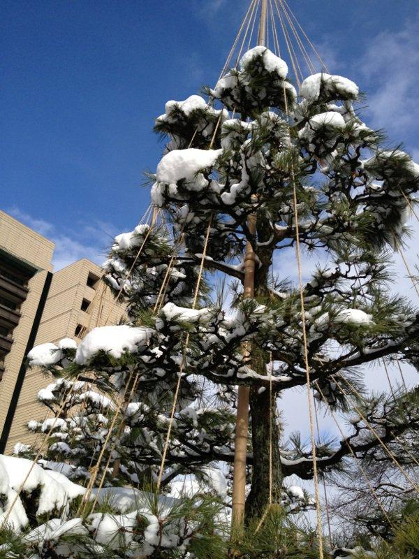 La neige à Fukui, Japon !!!