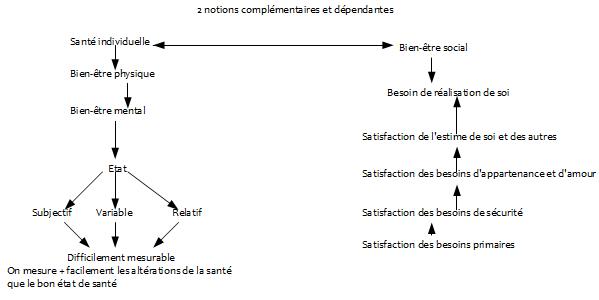 Fiche 2 : Santé individuelle et bien-être social d'une population