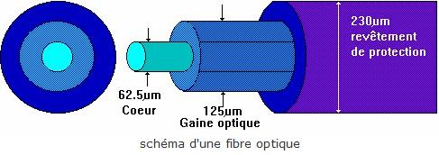 Chapitre 4. Réflexion totale - fibroscopie (suite 2)