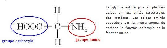 Chapitre 12. Groupes caractéristiques en chimie organique