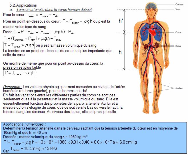 Chapitre 2. Tension artérielle