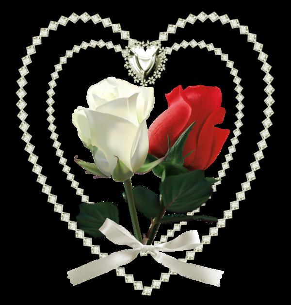 mercie mon amie loulou 1725 pour ce jolie cadeau car j ai ètè très èmu pour ce beau cadeau gros bisous ton ami bernard
