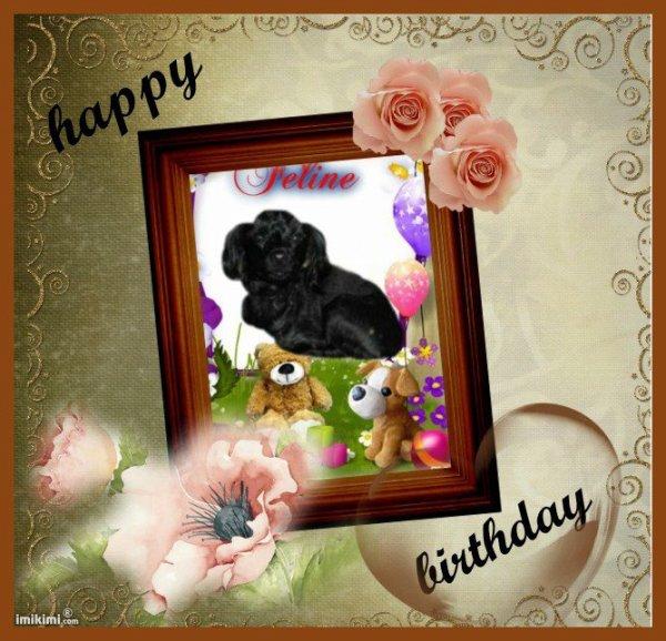 bonjour merci mon amie Madelon2008 pour ce merveilleux cadeau de ma petite chienne féline je t'envoi des gros bisous