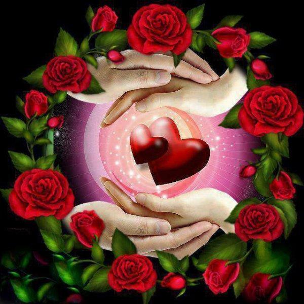 voici pour toi ma rose d'amour je viens te souhaité une très bonne FETES DES MERES car je t'aime hyper fort mon amour tu es mon rayon de soleil et tu me donne tout ton amour pour moi je t'aime ma chérie d'amour