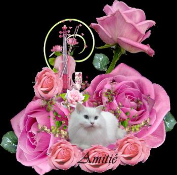 bonjour je passe en ce lundi te souhaité une très bonne journée en espèrent que tu a passer un bon week end bisous