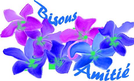 bonjour mes amies et amis  on a mit des cd pour pas que les oiseaux mange les fleurs j espère que vous allez bien en ce mercredi et merci pour vos coms car c est très gentil a vous tous gros bisous de ton ami bernard car c est très beau l amitiè