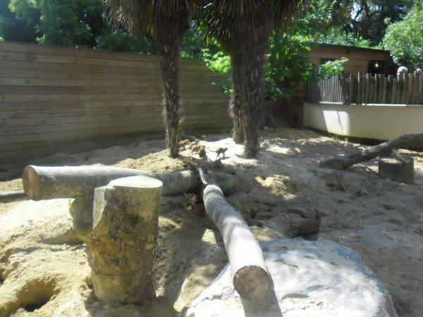 toujour au zoo ont n'as passer un belle après-midi en famille