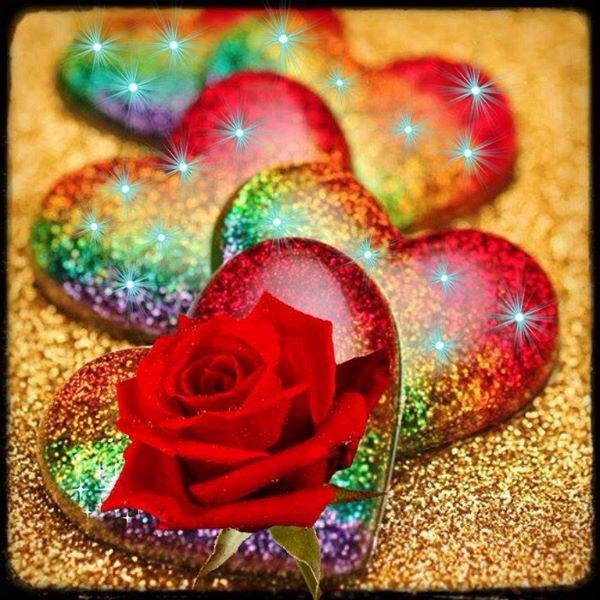 bonsoir ma rose d'amour je passe te faire un coucou et aussi t'offrire une superbe bouquets de rose c'est pour te prouvé tout l'amour que j'ai pour toi ma rose d'amour je t'envoi tout plein de gros bisous et je t'aime hyper fort