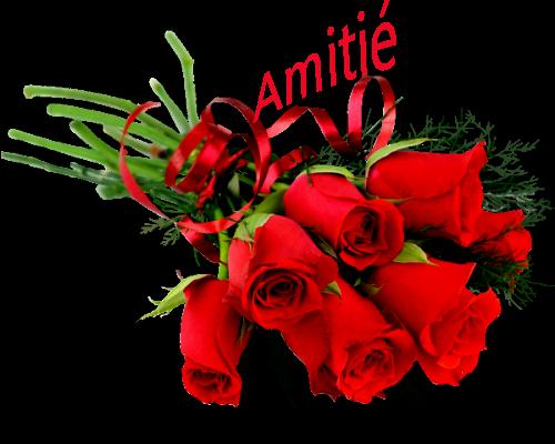 bonsoir ma rose d'amour merci pour ton jolie cadeau de ST VALENTIN c'est vraiment sublime j'ai adoré ma chérie je te souhaite une bonne fètes de ST VALENTINE et je t'aime ma rose d'amour