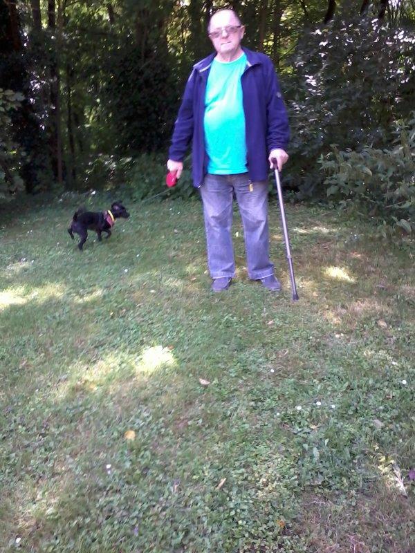 bonsoir mes amies et amis je vais vous mettent quelques photos de cette après-midi au bois derrière chez nous notre petite chienne féline et trop heureuse elle adore allé au bois je vous souhaitent une très bonne soirée et de gros bisous
