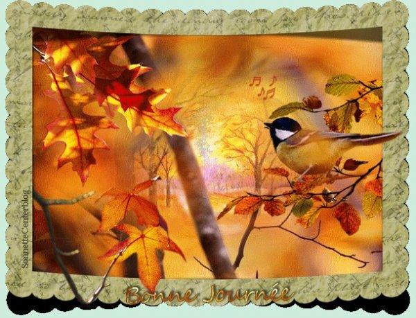 bonsoir mon amie sylvie166 merci pour ce super cadeau d'automne moi j'adore je te souhaite une très bonne soirée et j'espère que tu vas bien moi sa va pour le moment je t'envoi des milliers de gros bisous
