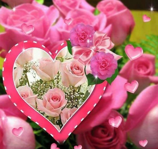 je vous souhaitent une très belle soirèe mes amies et amis en ce vendredi  au soir et j espère que vous allez très bien car moi je fais toujour du kinè pour ma bronchite et en ce moment il fait très froid et il a du soleil  beaucoup et ce cadeaux et pour vous toutes car vous ètes gentil avec moi et je vous souhaite un très bon week-end a vous tous et aussi une bonne journèe pour demain samedi je vous fais des gros bisous ton ami bernard car c est très beau l amitè