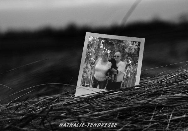 bonjour mon amie Nathalie-Tendresse pour ce sublime cadeaux il sont superbe moi j'adore dommage que j'ai pas pu avoir le derniers sa me fait trop plaisir je t'envoi tout plein de gros bisous