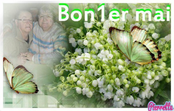 bonjour mon amie MIAU88300 merci pour ce sublime cadeau du 1 er Mai il est trop beau j'espère que tu vas bien chez nous il pleut je te souhaite une bonne fin d'après-midi et je t'envoi des milliers de gros bisous du coeur