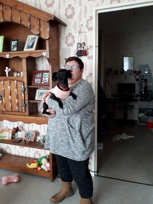 bonsoir a vous aujoud'hui cétait l'anniversaire de notre petite chienne féline elle a eu 7 ans j'espère que vous allez bien nous sa vas je vous envoient tout plein de gros bisous