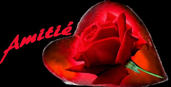 bonsoir a vous tous et j espère que vous allez très bien je vous souhaitent une bonne soirèe et voici un joli cadeaux de bon coeur et j ai passèe une bonne semaine et je vous fait des gros bisous votre ami akcoucou car c est très beau l amitiè avec vous tous