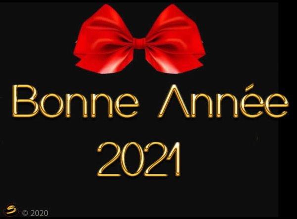 bonsoir  mes amies et amis  je vous souhaitente une bonne fin D'année 2020 ainsi qu'une bonne et douce soirée et je vous envoient mes meilleurs Voeux pour la nouvelle Année 2021 joie bonheur amour et surtout la Santé