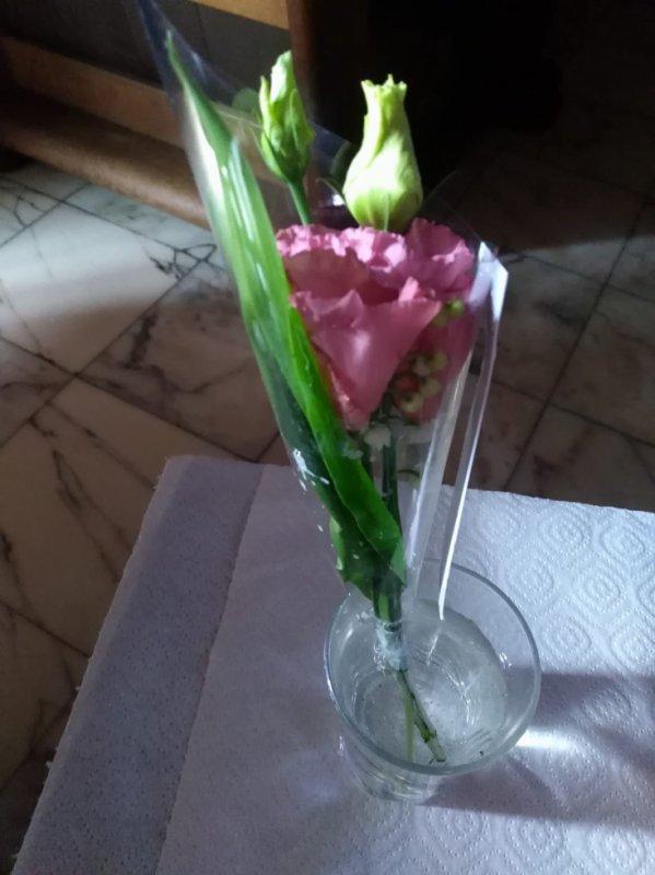 Bonsoir mon amie coeur-445 merci pour ton sublime cadeaux du 1er Mai qui ma trop fait plaisir j'espère que tu vas bien moi je vais bien je te souhaite une bonne soirée et tout plein de gros bisous