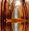 voila l'automne et ces couleurs magiques !
