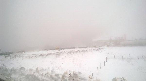 Trail Blanc des Vosges au Rouge Gazon (88) le dimanche 31 janvier 2016