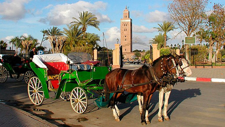 Printemps prochain je retourne 2 semaines en Tunisie