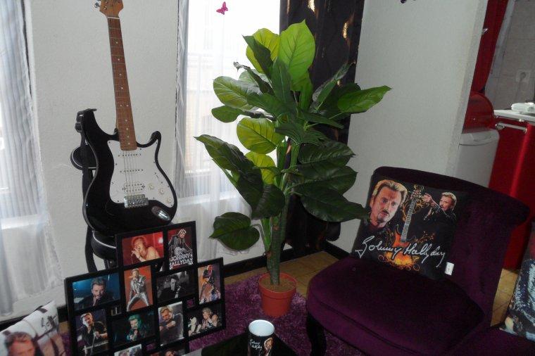 Je me lance dans les plantes , MDR , comme je ne sais pas m ' en occuper et quelles meurent , j ai pris des fausses.....