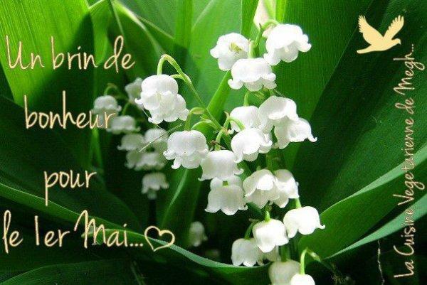 Bon 1 er mai à vous tous