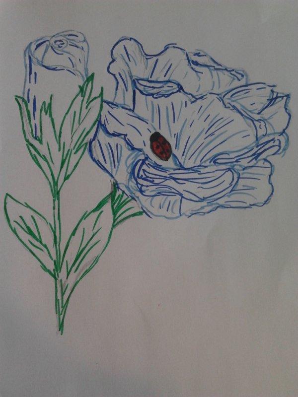 rose bleue de moi