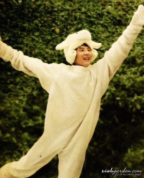 Quand les idoles essayent des cosplays d'animaux!!