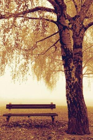 Assis sur un banc... Part 2