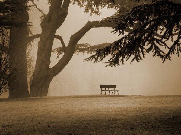 Assis sur un banc... Part 4