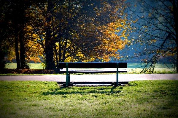 Assis sur un banc... Part 15